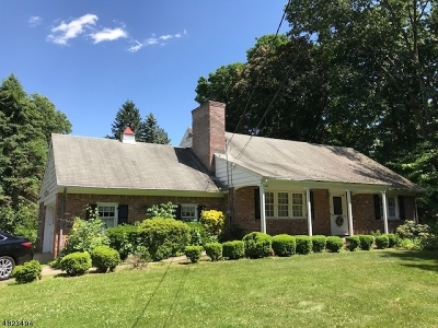 Wyckoff Twp. Single Family Home For Sale: 512 Wyckoff Ave