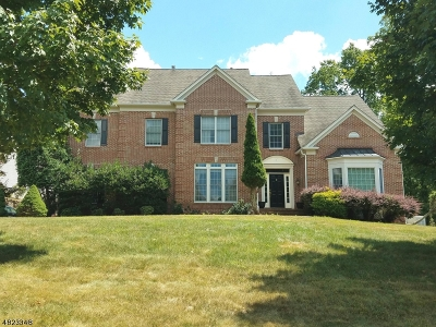 Green Brook Twp. NJ Rental For Rent: $5,000