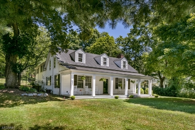 Peapack Gladstone Boro NJ Single Family Home For Sale: $995,000