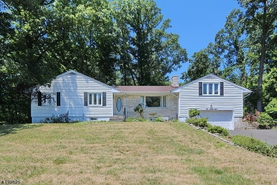 Mountainside Boro Single Family Home For Sale: 1098 Sunny View Rd