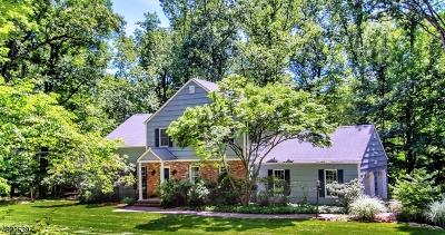 Morris Twp. Single Family Home For Sale: 4 Redwood Rd