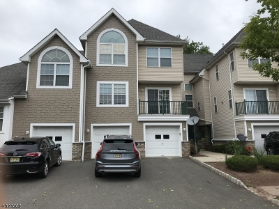 Montgomery Twp. Condo/Townhouse For Sale: 206 Rip Van Dam Ct