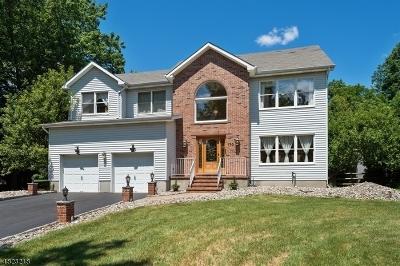 Branchburg Twp. NJ Single Family Home For Sale: $569,000