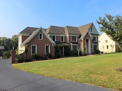 Branchburg Twp. Single Family Home For Sale: 8 Meadow View Ct