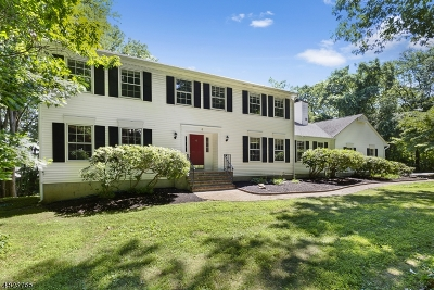 Roxbury Twp. Single Family Home For Sale: 6 Fern Ct