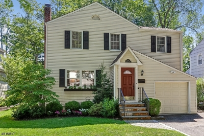 Chatham Boro Single Family Home For Sale: 49 Tallmadge Ave