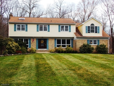 Montville Twp. Single Family Home For Sale: 53 Stony Brook Rd