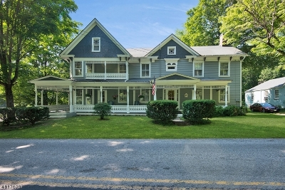 Hunterdon County Single Family Home For Sale: 446 Penwell Rd