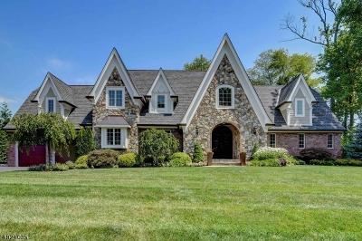 Mountainside Boro Single Family Home For Sale: 264 Apple Tree Ln