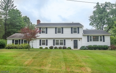Bridgewater Twp. Single Family Home For Sale: 216 Short Hills Dr