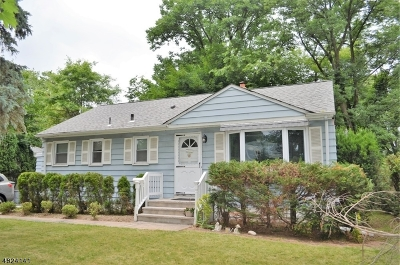 Scotch Plains Twp. Single Family Home For Sale: 235 Haven Ave