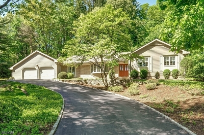 Morris Twp. Single Family Home For Sale: 6 Millstone Court