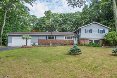 Roxbury Twp. Single Family Home For Sale: 220 S Hillside Ave