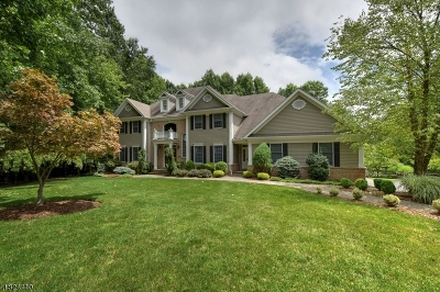 Scotch Plains Twp. Single Family Home For Sale: 9 Pheasant Lane