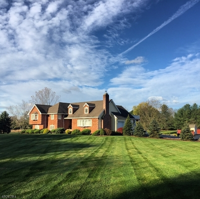 Readington Twp. Single Family Home For Sale: 23 Roosevelt Rd