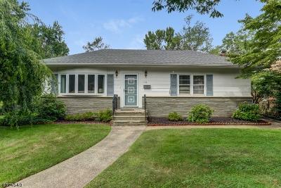 Springfield Single Family Home For Sale: 188 Hillside Ave