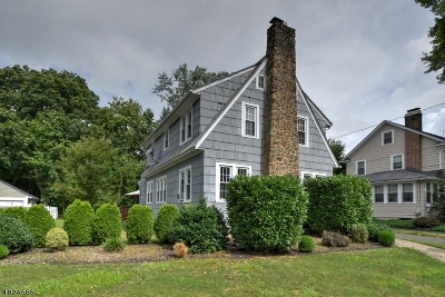 Westfield Town Single Family Home For Sale: 721 Belvidere Ave