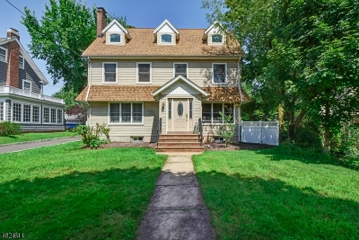 Westfield Town Single Family Home For Sale: 252 Clark St