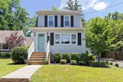 New Providence Single Family Home For Sale: 116 Fairview Ave