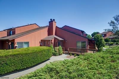 Florham Park Boro Rental For Rent: 250 Ridgedale Ave T-4 #4
