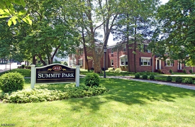 Summit City NJ Condo/Townhouse For Sale: $355,000