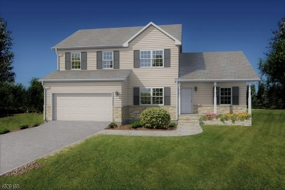 Bridgewater Twp. Single Family Home For Sale: 3 Carriage Ct