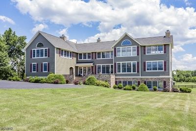 Montgomery Twp. Single Family Home For Sale: 49 Fairview Rd