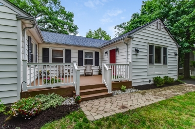 Bernards Twp. Single Family Home For Sale: 53 Peachtree Rd