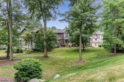 Chatham Twp. Condo/Townhouse For Sale: 22e Heritage Dr