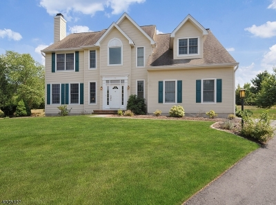 Montgomery Twp. Single Family Home For Sale: 11 Heritage Hills Ct