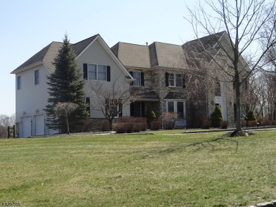 Chester Single Family Home For Sale: 9 Highland Dr
