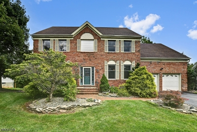 Montgomery Twp. Single Family Home For Sale: 51 Ketcham Rd
