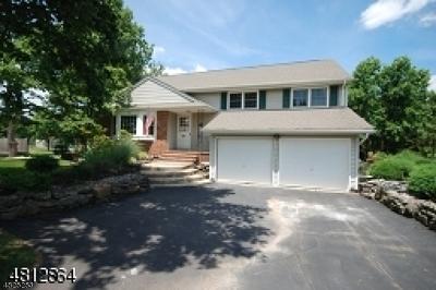 Hillsborough Twp. Single Family Home For Sale: 52 Surrey Dr