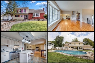 Parsippany-Troy Hills Twp. Single Family Home For Sale: 9 Holly Glen Ln