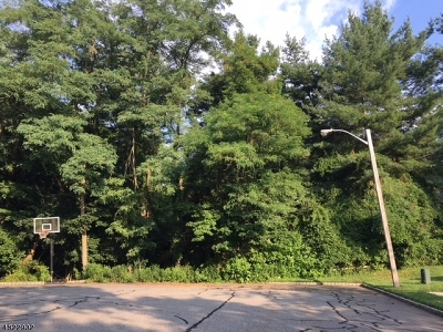 Morris Twp. Residential Lots & Land For Sale: 7 Peach Tree Way
