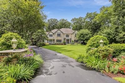 Sparta Twp. Single Family Home For Sale: 1 Fox Run Road