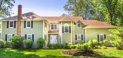 Single Family Home For Sale: 247 Rock Ln