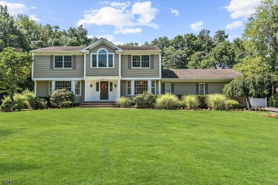 Wyckoff Twp. Single Family Home For Sale: 493 Coudert Pl