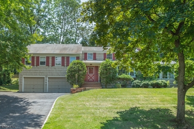 Single Family Home For Sale: 9 Fielding Rd