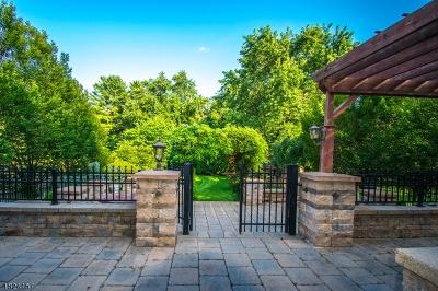 Bridgewater Twp. Single Family Home For Sale: 11 Stapleton Ct