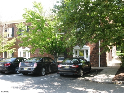 Chester Boro Commercial For Sale: 530 Main St #103