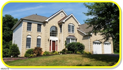 Bernards Twp. Single Family Home For Sale: 25 Raritan Pl