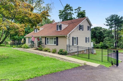 Morris Twp. Single Family Home For Sale: 330 Mt Kemble Ave