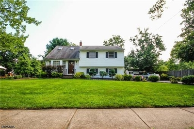 Franklin Twp. Single Family Home For Sale: 3 Bartle Rd