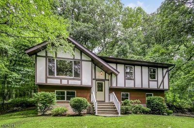 Mount Olive Twp. Single Family Home For Sale: 2 Lozier Rd