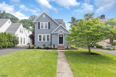 Westfield Town Single Family Home For Sale: 315 Hyslip Ave