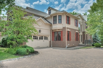 New Providence Condo/Townhouse For Sale: 9 Green Way #201