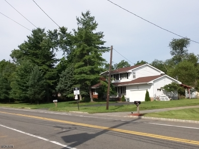Single Family Home For Sale: 161 Cedar Grove Ln