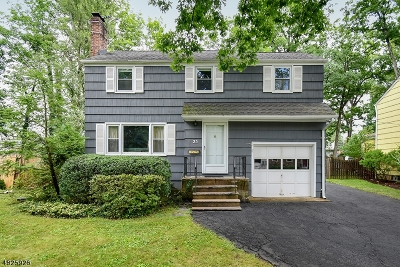 Summit Single Family Home For Sale: 25 Webster Ave