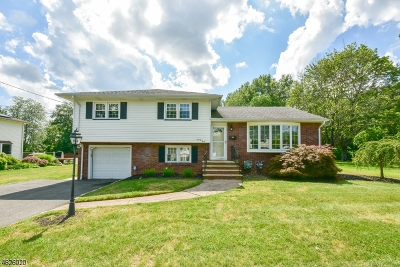 Wayne Twp. Single Family Home For Sale: 23 Allen Dr